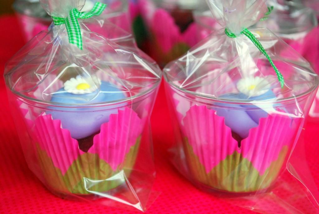 portable cupcakes_small
