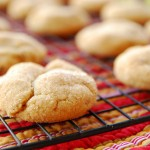 brown butter snickerdoodles pudding mix 1_small