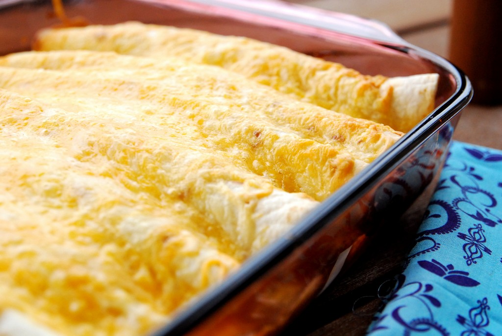 Chicken Enchiladas I Recipes — Dishmaps