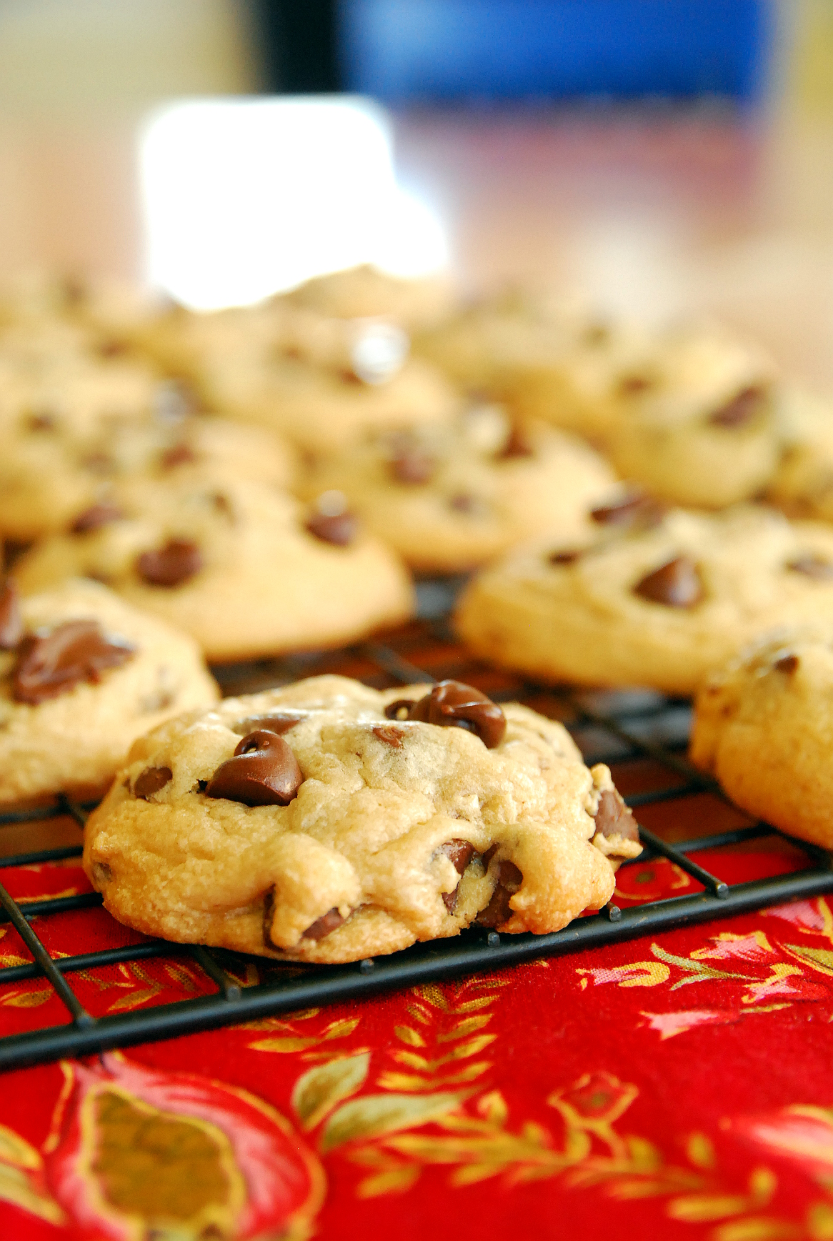 Soft Batch Malted Chocolate Chip Cookies